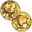 [American Buffalo Gold Coin .9999  (back date)]